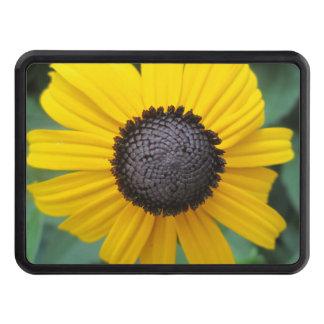 Daisy Garden Flower Gloriosa Hitch Covers