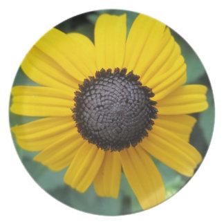 Daisy Garden Flower Gloriosa Party Plates