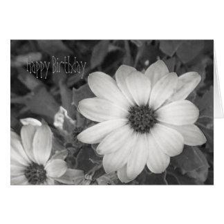 Daisy Happy Birthday Card