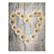 Daisy heart postcard