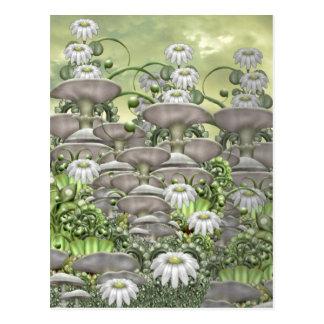 Daisy Hedge Postcard