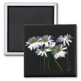 Daisy III 2 Inch Square Magnet