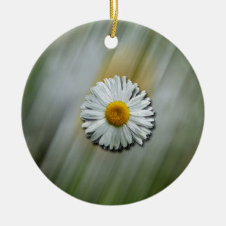 Daisy in a Hurry Double-Sided Ceramic Round Christmas Ornament