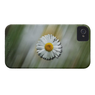 Daisy in a Hurry iPhone 4 Case-Mate Case