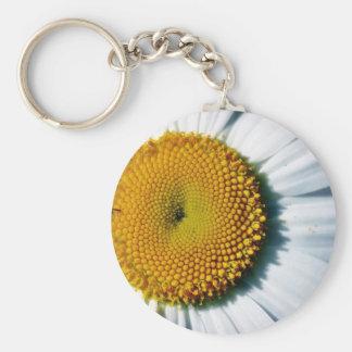 Daisy In Balboa Park Basic Round Button Keychain