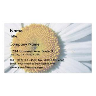 Daisy In Balboa Park Business Card Templates