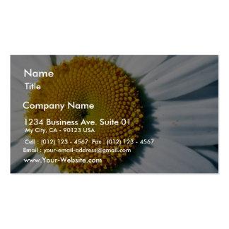 Daisy In Balboa Park Business Cards