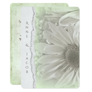 daisy in soft green hue with torn paper edge card