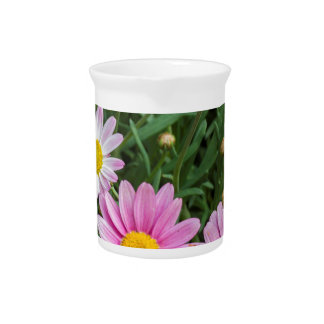 daisy in the garden drink pitcher