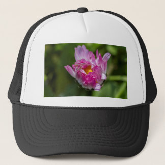 daisy in the garden trucker hat