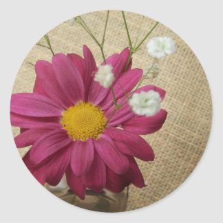 Daisy In Vintage Apothecary Bottle Classic Round Sticker