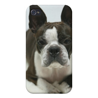 Daisy Ⅰ iPhone 4/4S Case