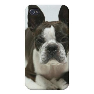 Daisy Ⅰ iPhone 4 Case