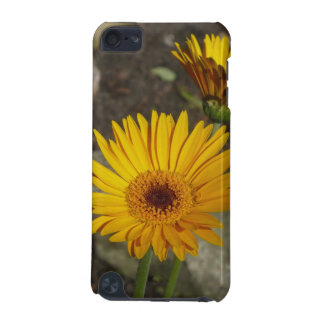 Daisy iPod Touch 5G Case