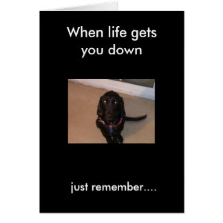 daisy, just remember...., When life gets you down Greeting Card