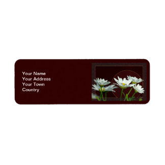 Daisy Label