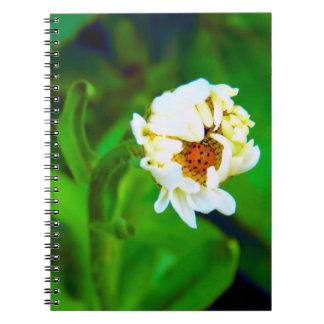 Daisy & Ladybug Notebook