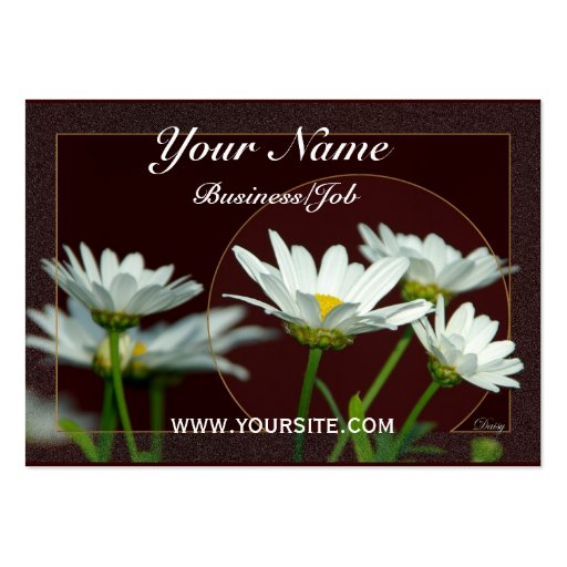 Daisy Business Cards Pack 100