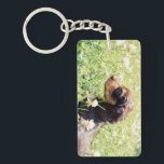 "Daisy &amp; Littermates Double Photo Keepsake Keychain<br><div class=""desc"">Daisy &amp; Littermates Double Photo Keepsake</div>"