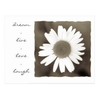 daisy love postcard