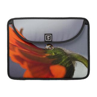 Daisy MacBook Pro Sleeve