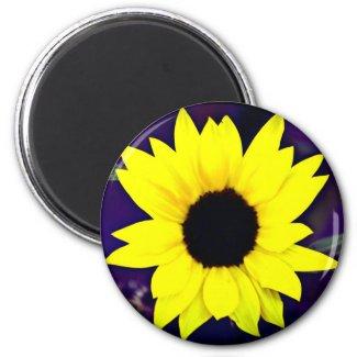 Daisy Magnet magnet