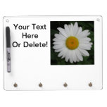 Daisy May Queen Close Dry-Erase Boards