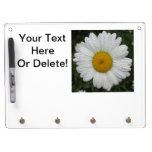 Daisy May Queen Water Dry-Erase Board