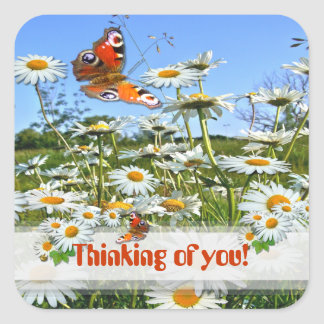 DAISY MEADOW ~  Thoughts ~ Envelope Sealers Square Sticker