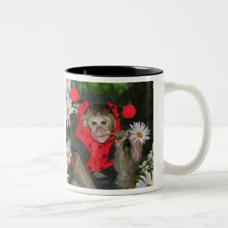 Daisy Muncher Two-Tone Coffee Mug