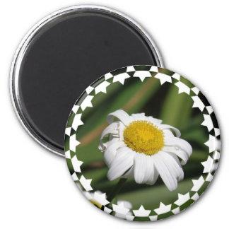 Daisy of Love Magnet Fridge Magnets