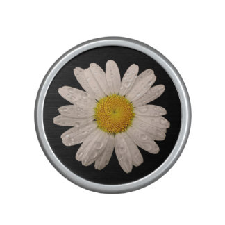 Daisy on Black  Bumpster Speaker