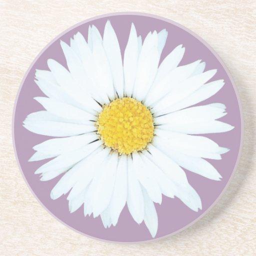 Daisy on Purple | Floral Sandstone Coaster