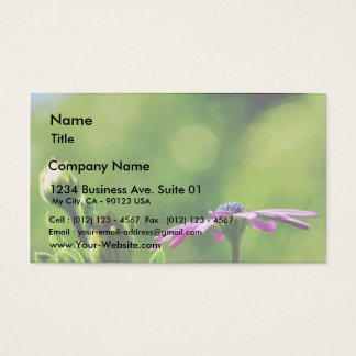 Daisy Out On My Balcony Business Card