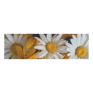 daisy panel wall art