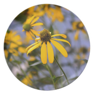 Daisy Party Plate