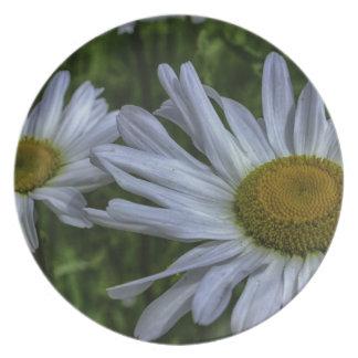 daisy party plates