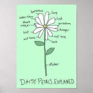 Daisy Petals, Explained Poster
