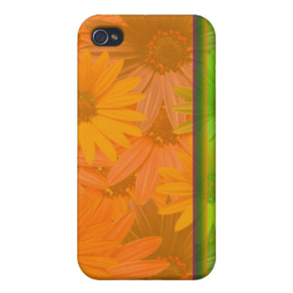 daisy phone iPhone 4/4S cases