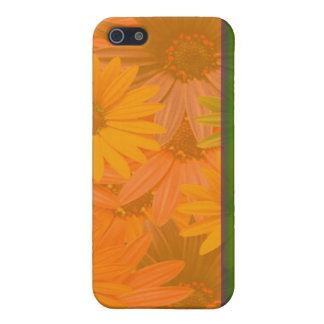 daisy phone iPhone 5 cases