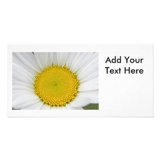Daisy Photo Photo Card Template
