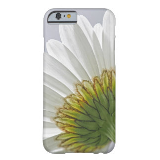 Daisy Picture iPhone 6 case