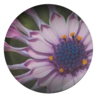 Daisy Plate plate