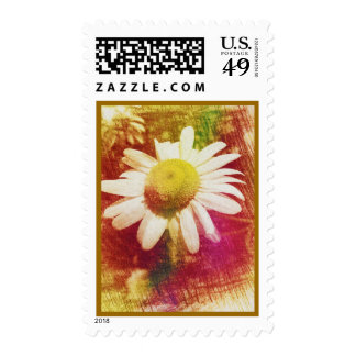Daisy Postage (Medium)