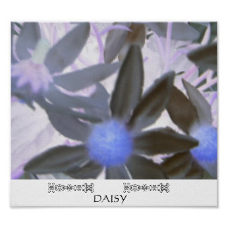Daisy - Print