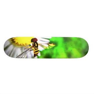 Daisy Skateboard