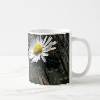 Daisy Solitude Coffee Mug