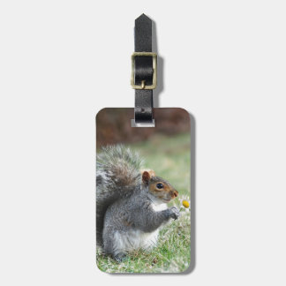 Daisy Squirrel Bag Tag
