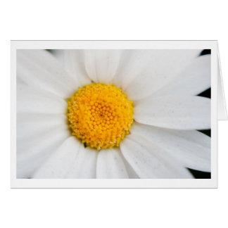 Daisy Stationery Note Card