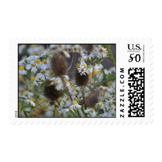 Daisy Tails Postage